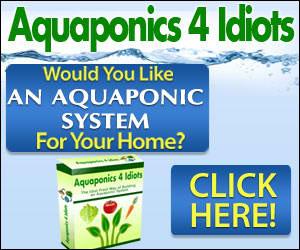 Aquaphonics for Idiots